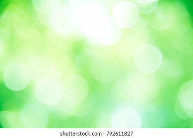 Green bokeh defocus background and texture from nature