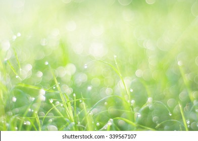 Green bokeh on grass in the morning abstract background