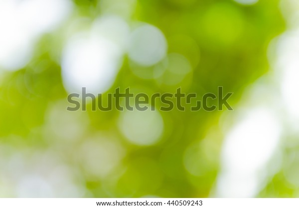 Green bokeh out of focus background