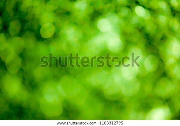Green bokeh soft background