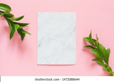 Green branches of ruscus and a marble blank on pink background. Flat lay, top view, copy space. Minimal concept