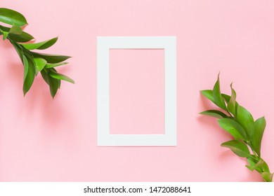 Green branches of ruscus and a white paper frame on pink background. Flat lay, top view, copy space. Minimal concept