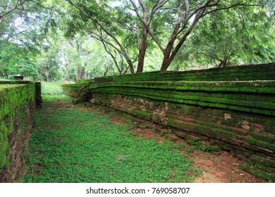 Green brick walls in Polonnaruwa, Sri Lanka
