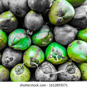 green and brown coconuts for social media background