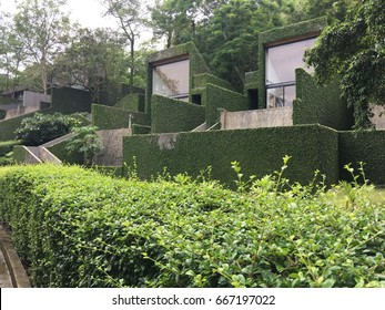 Green building with green ecological wall covered with plants