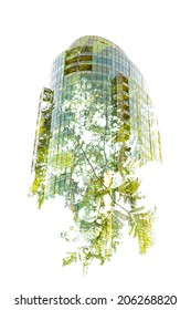Green Building - In-Camera Double Exposure of a New High-Rise Growing from a Green Tree