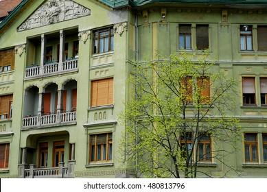 Green Building with Tree In Timisoara
