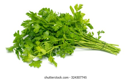 Green bunch of parsley