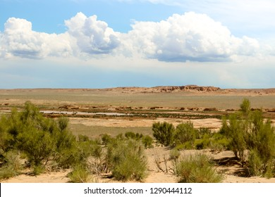 Green bushes in front of rock formations in Gobi Desert with cloudy sky during summer (Gobi Desert, Mongolia, Asia)