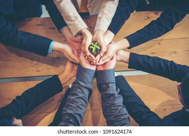 Green business eco company partners holding plant together trust mission team with green hands stacked. Ecology collaboration development ecosystem organization in greenery company partnership concept