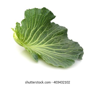 Green cabbage isolated on white background. Clipping Path
