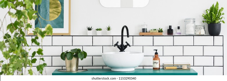Green cabinet with fresh plant, bottle with soap and white sink with black tap in real photo of bright bathroom interior
