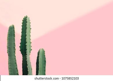 Poster Babykamer Pastel : Roze pastel muren stock photos images photography shutterstock