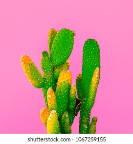 Green Cactus on pink.