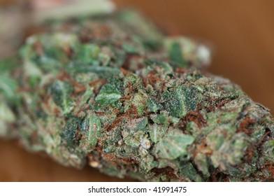 A green cannabis flower.