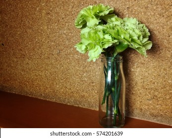 green carnation in vase. green carnations in vintage vase with  wooden background. Valentine's Day