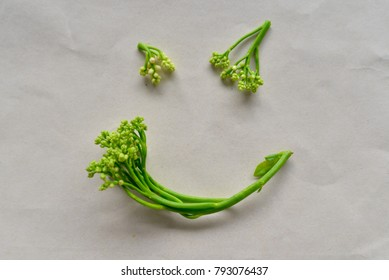 Green Ceylon spinach or East Indian spinach put on paper in shape of smile face