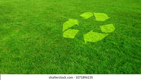 Green Choice for the Environment