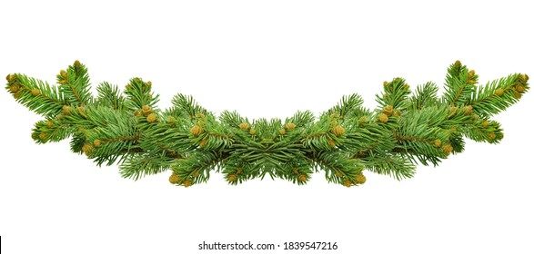 Green Christmas border of pine branch, isolated on white background. Xmas garland decoration. Border of branch christmas tree. poster for Christmas and winter holidays. Garland/wreath of pine branches
