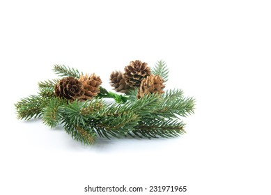 Green Christmas wreath from pine branches and pine cones isolated on white background