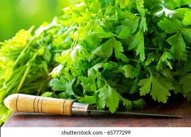 Green Cilantro herbs and knife.