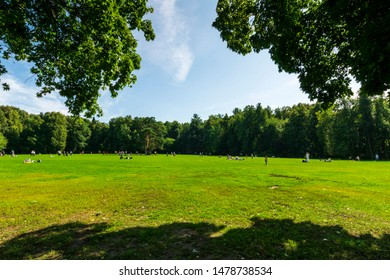 green city park during a sunny day , place of urban rest for citizens in a holyday with fine weather