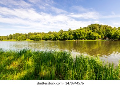green city park with a nice lake during a sunny day , place of urban rest for citizens in a holyday with fine weather , people sailing on boats