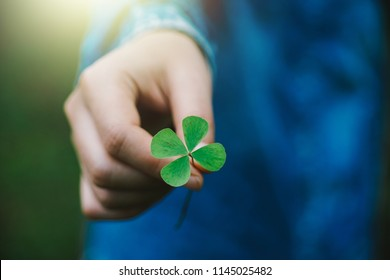 Green clover leaf in hand.