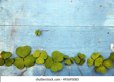 Green clover leaf on wooden background