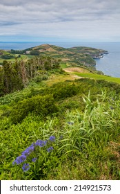 Green coastal view of Sao Miguel, Azores, Portugal, Europe