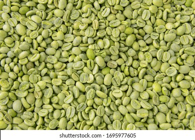 Green coffee beans as background