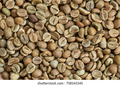 Green coffee beans, grade robusta Uganda