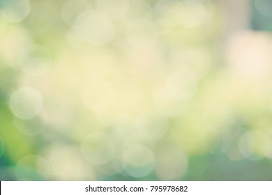 green color abstract bacground withe blurred defocus bokeh light for template