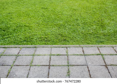 Green color of field grass and block of cement floor for walkway,background concept with copy space for text design