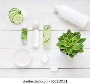 Green cosmetics flat lay with succulent plant. Top view