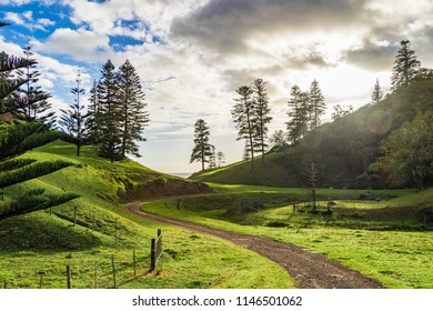 Green countryside, Norfolk Island