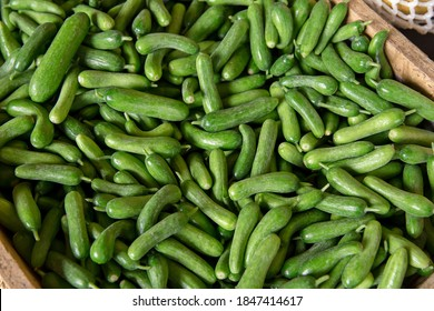 Green cucumbers background. Cucumbers latin name - Cucumis sativus. Fresh cucumbers in the market. Beautiful decor with fresh cucumbers in the form of an even row