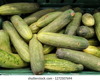 Green cucumbers on shelf in supermarket