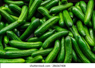 Green cucumbers on shelf in supermarket. Organic eating. Agriculture retailer. Farmer's food.