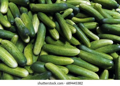Green cucumbers piled. Farmer's food. Vegetables herbs food Thailand.