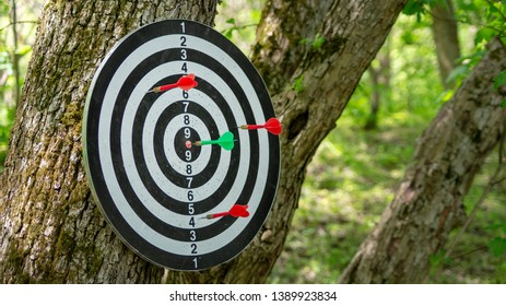 The green dart plunges right into the center of the target. Red darts did not hit the darts target. against the backdrop of nature