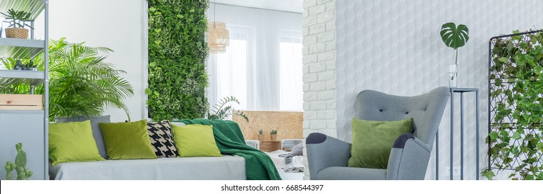 Green decoration in grey and white living room