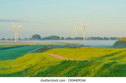 Green dike in a foggy landscape below a blue sky at sunrise in summer