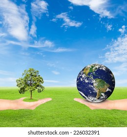 Green Earth concept,hand holding tree and earth against green field and blue sky background.Elements of this image furnished by NASA