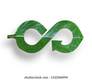 Green Eco-friendly and circular economy concept, leaf in form of arrow infinity recycling shape, isolated on white background.