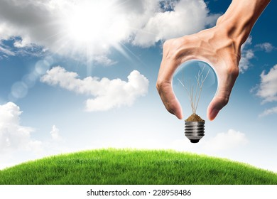 Green energy concept - dry tree branch in bulb and grass field with bulb shaped hand on blue sky and cloud background