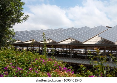 Green energy, solar panels on roof