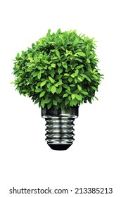 Green Energy in white background.