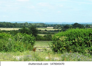 The green English country side