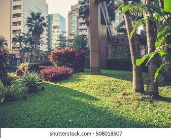 Green environment and office buildings. Toned image.